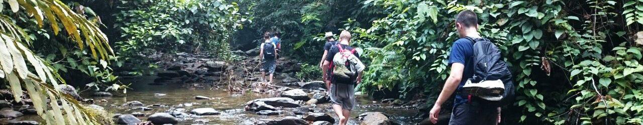 Bukit Lawang Adventure